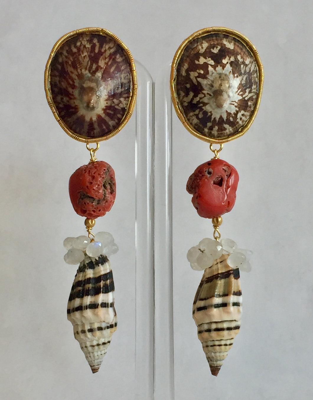 Rustic Limpet and Coral Earrings