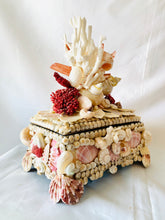 Small Shell, Coral and Crystal Box