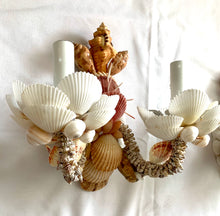 Two-Light Shell Sconces in Light Colors