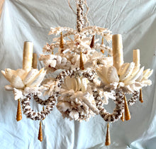 White and Caramel Coral Chandelier