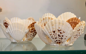 Shell Votive Candle Holders