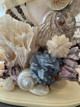 Pair Custom Coral and Shell Lamps