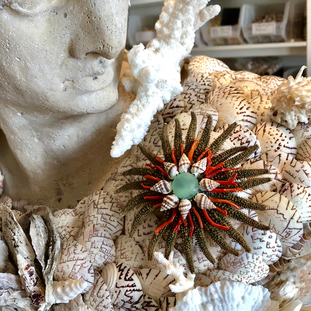 Sea Star, Amazonite Brooch