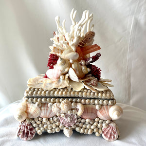 Exquisite Shell, Coral-Encrusted Box