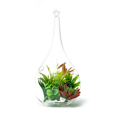 Artificial Succulent Plant In A Hanging Glass Terrarium