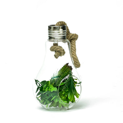 Decorative Glass Hanging Bulb Artificial Succulent Plant Featuring Rope Display