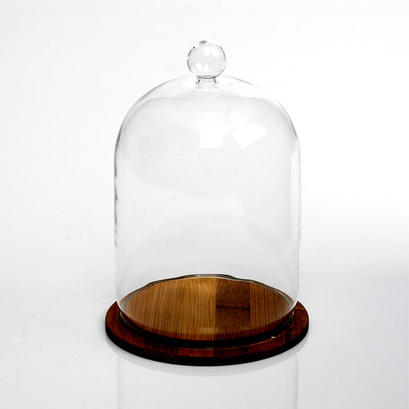 Mini Cake Glass Dome Stand