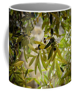 Olive Tree Art - Mug - Shop Italy and Sicily Gifts Made in Italy Italian Themed