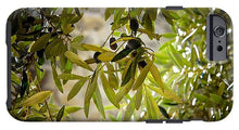 Olive Tree Art - Phone Case - Shop Italy and Sicily Gifts Made in Italy Italian Themed