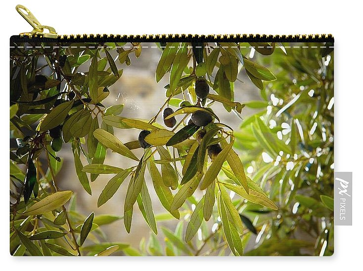 Olive Tree Art - Carry-All Pouch - Shop Italy and Sicily Gifts Made in Italy Italian Themed