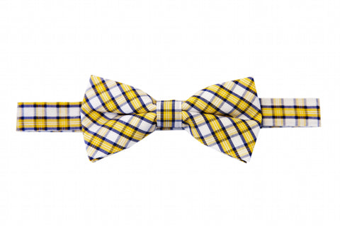 Harrisburg Honey Bow Tie