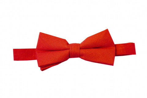 Alexandria Apple Bow Tie