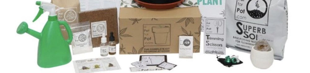 cannabis grow kit