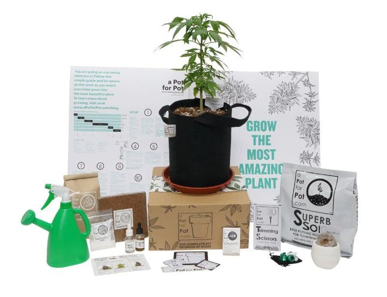 small complete grow kit