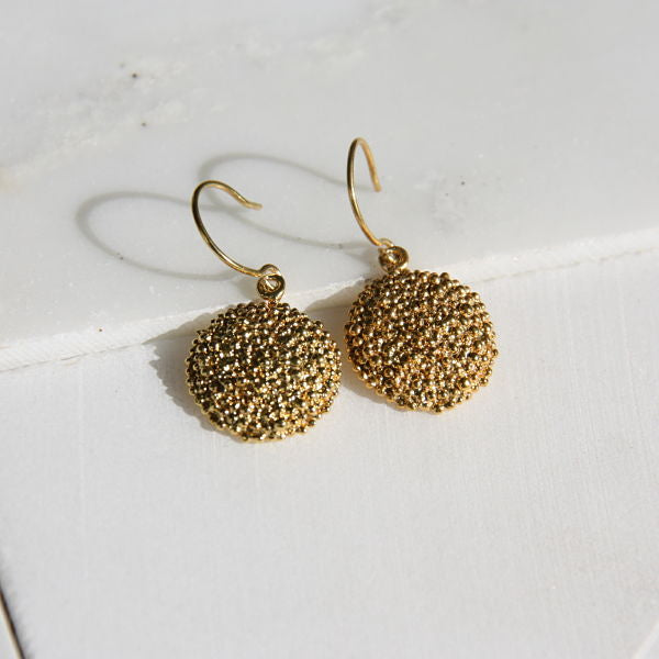 Darius Collection Small Shield Earrings on Wire