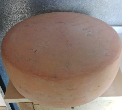 Raclette cheese after aging for a few weeks