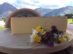 Raclette cheese from the Swiss Alps