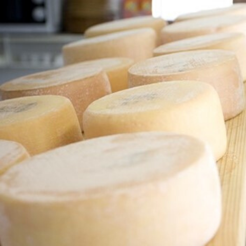 Cheese from Alp Maran
