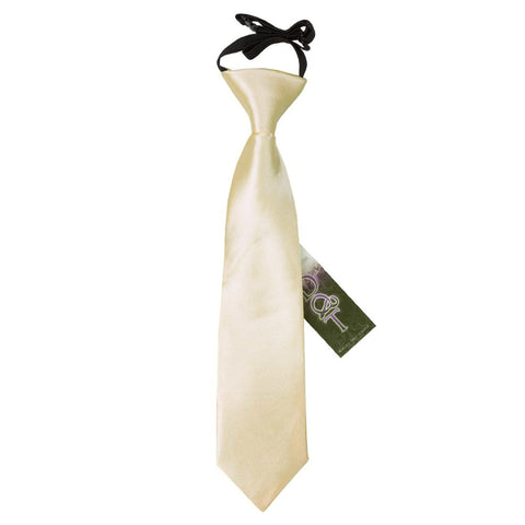 TiesDirect.co.uk - Plain Satin Elasticated Tie - Boys Colour champagne