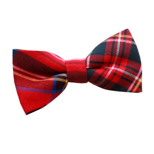 TiesDirect.co.uk - Tartan Pre-Tied Bow Tie Colour red-royal-stewart