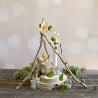 Aspen Ambiance Centerpiece Package