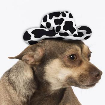 Cowboy Hat Dog Costume - Cow Print