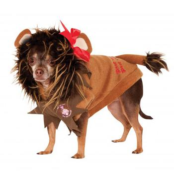 Wizard of Oz's Cowardly Lion Dog Halloween Costume