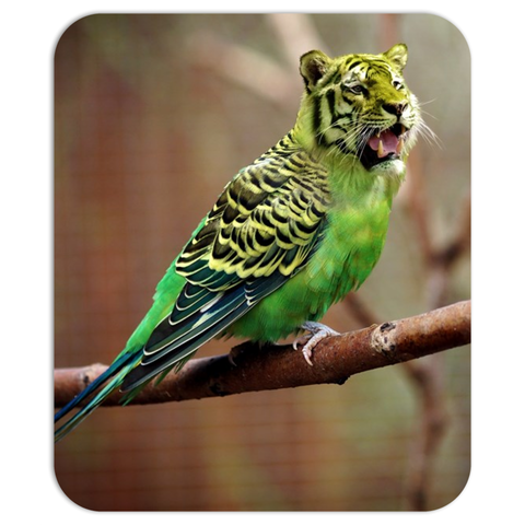 Tiger-Bird Mouse Pad