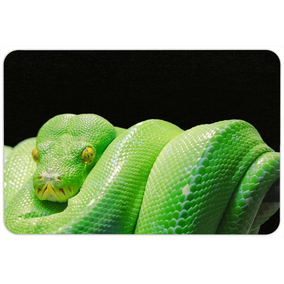Shes A Snake Floormat