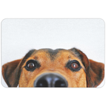 Welcome Dog Floormat