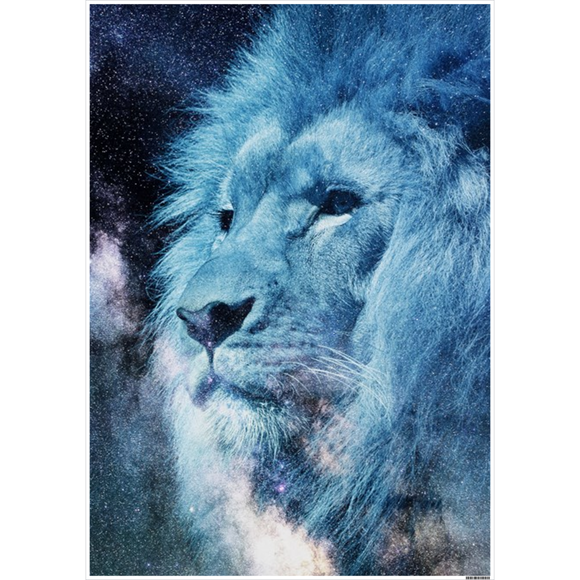 Galaxy Lion Poster