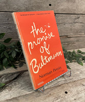 """The Promise of Bultmann"" by Norman Perrin"
