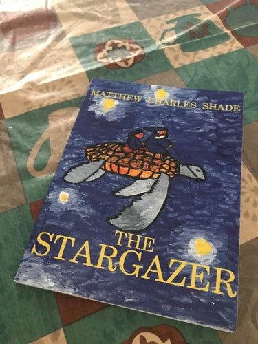 The Stargazer by Mathew Charles Shade