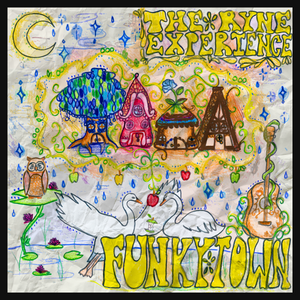 Funky Town CD