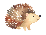 Vinyl Sticker - Hedgie