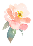 Vinyl Sticker - Blush Blossom