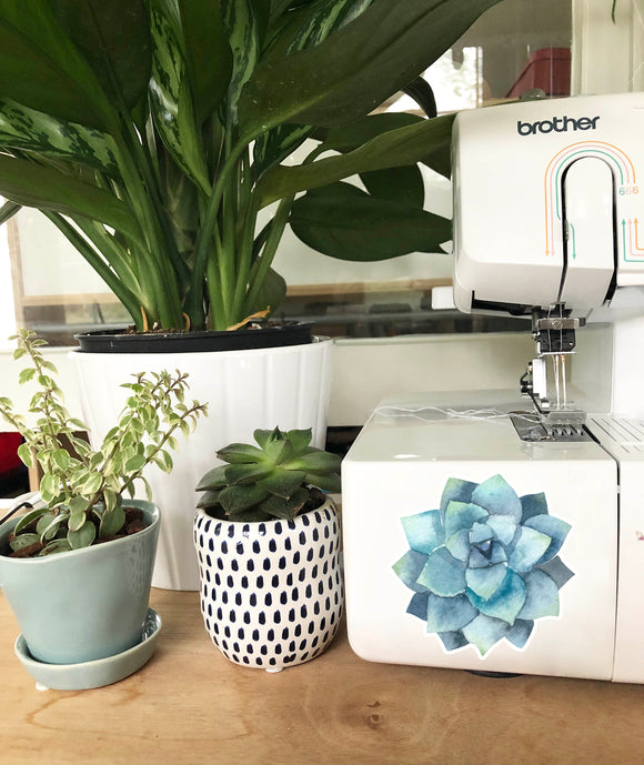 Vinyl Sticker - Blue Green Succulent