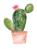 Vinyl Sticker - Terra Cotta Pot Cactus