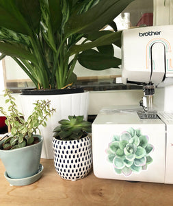 Vinyl Sticker - Succulent Mint