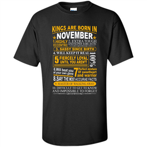 Kings are born in November, birthday men t-shirt, vintage retro birthday