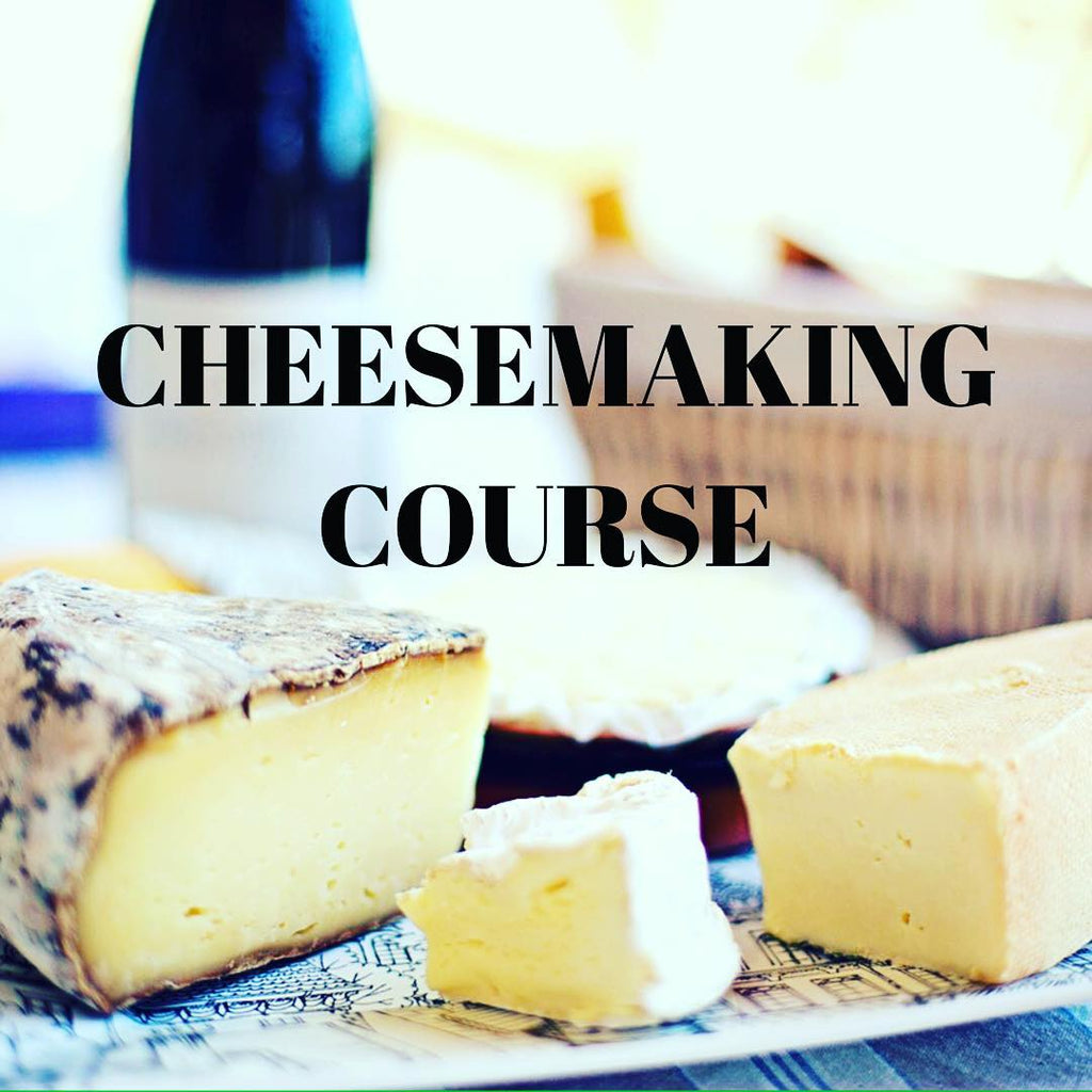 Cheesemaking Course