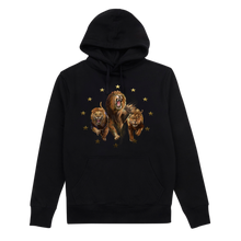 Load image into Gallery viewer, Europe Tour Hoodie