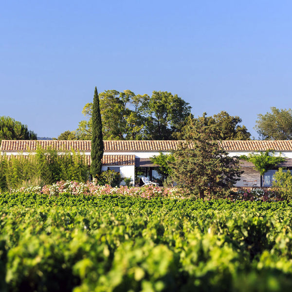 Domaine Figuiere Provence
