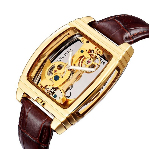 Automatic Skeleton Luxury Transparent Dial Watch