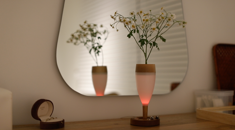 DelightWine  Transform Diffuser Mood Lamp 4 colors/ After 2hours turn off/ Transfom design