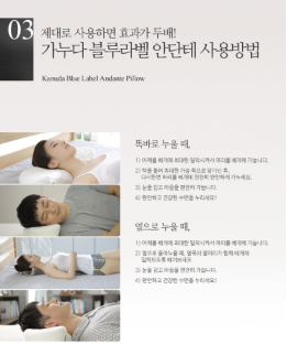 KANUDA Gold Label Adagio Pillow - Dotrade Express. Trusted Korea Manufacturers. Find the best Korean Brands