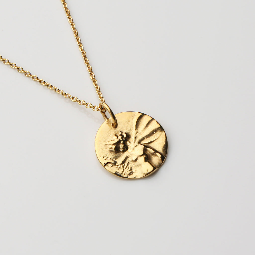 The Heroine Medallion - Gold Vermeil