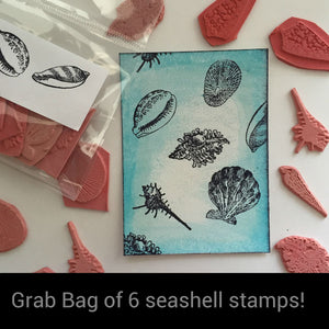 Seashell Grab Bag
