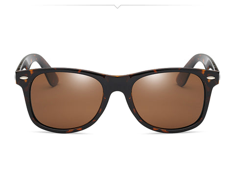Retro Rivet Polarized Sunglasses