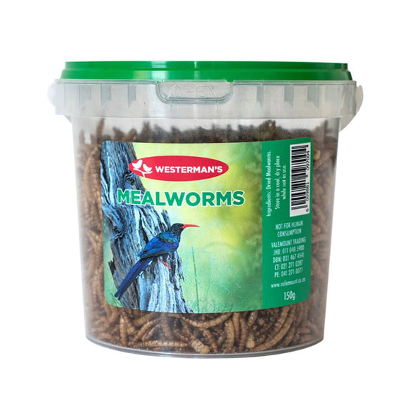 Mealworms 150g - Westermans - Mischief Pet Products